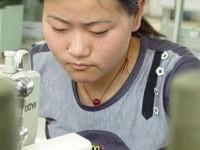 Rieti, imprese nel Reatino sempre più straniere: boom di aziende cinesi