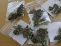 Monterotondo – Spacciava marijuana nei giardini pubblici, arrestato 17enne