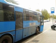 cotral_bus30