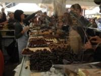 Promoter cioccolato a Fiano Romano