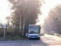 Latina, l'autista ubriaco sul bus Cotral stracolmo