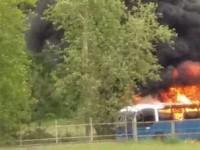 Roma, un altro bus Cotral in fiamme: passeggeri e autista in fuga sulla Salaria