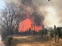 Incendio a Monterotondo: brucia area boschiva, evacuate abitazioni