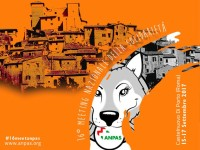15-17 settembre: Meeting Anpas -Soccorso, protezione e accoglienza a Castelnuovo di Porto