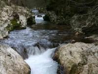Salviamo il fiume Farfa: in tre giorni già raccolte quasi tremila firme