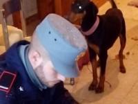 Montopoli Sabina. Decine di cani tenuti in condizioni precarie: sequestri e denuncia dei carabinieri forestali