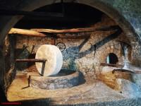 Nella Sabina la tradizione dell'olio extravergine tra storia, gusto e arte