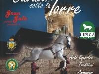 Cavalli sotto la torre Fiano Romano 2018