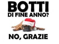 Facciamo appello ai sindaci per vietare i botti da Natale a Capodanno: gli animali muoiono di paura