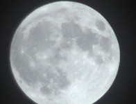 luna19