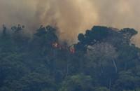 Amazon mette il bavaglio ai propri dipendenti: licenziati se parlano contro sue politiche ambientaliste
