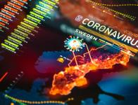 modelli-coronavirus