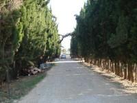 Focolaio di Coronavirus a Fiano Romano: coinvolta la casa di riposo Villa Rosa Fiorita